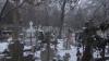Cimitirele vechi, în paragină: În unele se joacă fotbal, în altele pasc vacile VIDEO