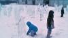 O colonie de pinguini din gheaţă a apărut peste noapte în Moscova VIDEO