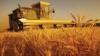 Proiectul privind introducerea impozitului unic în agricultură, avizat pozitiv de Comisia economie, buget şi finanţe