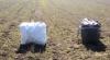 Doi ucraineni, opriţi cu focuri de armă la frontiera Republicii Moldova