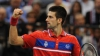 Novak Djokovic a revenit la antrenamente după ce a călcat strâmb la Cupa Davis