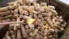 Grădiniţa şi şcoala din satul Ţareuca vor înlocui iarna viitoare încălzirea cu gaz pe cea cu biomasă