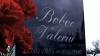 În memoriam Valeriu Boboc. Mai mulţi tineri au fost la mormântul tânărului, pentru a-i aduce un omagiu