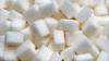 O tonă de zahăr de contrabandă, adus din Ucraina, urma să ajungă în ţară prin regiunea transnistreană