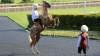 (VIDEO) Preşedintele Turkmenistanului a căzut de pe cal în timpul unei curse