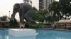O sculptură în mărime naturală a unui elefant a fost dezvelită în Hong Kong