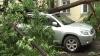 Arbori căzuţi, acoperiş luat de vânt şi apartamente inundate, după furtuna de ieri din Capitală