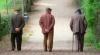 Trişti şi daţi uitării de Paşti. Cum sărbătoresc bătrânii de la azilul din Micleuşeni VIDEO