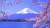 Muntele Fuji, vilele Medici şi ruinele oraşului Herson, printre siturile ce ar putea fi incluse în patrimoniul UNESCO