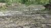 Consecinţele ploii de aseară: Culturi agricole compromise, beciuri inundate, drumuri deteriorate