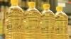 Angajaţii celui mai mare producător de ulei vegetal din Moldova ameninţă cu proteste