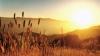 Soare arzător în toată ţara. Maximele termice ajung la 34 grade Celsius