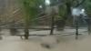 """(VIDEO) Acoperişuri smulse, copaci doborâţi şi drumuri blocate de """"Supertaifunul"""" Usagi, în Filipine şi Taiwan"""