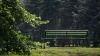 Un italian a fost găsit spânzurat într-un parc din sectorul Buiucani al capitalei