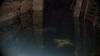 Subsolul unui bloc din oraşul Durleşti, inundat DETALII