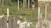 Pagube provocate de ploaie în mai multe localităţi din raionul Cahul
