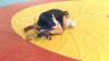 Moldoveanul Nicolae Ceban a ajuns în sferturile categoriei 96 de kilograme, la Mondialul de lupte