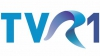 Postul public românesc TVR 1 revine în Moldova