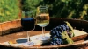 Presa internaţională, despre embargoul Rusiei la vinurile moldoveneşti: Chişinăul se aşteaptă şi la alte intimidări