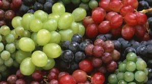 Sezonul strugurilor: Ce beneficii au fructele pentru organsim