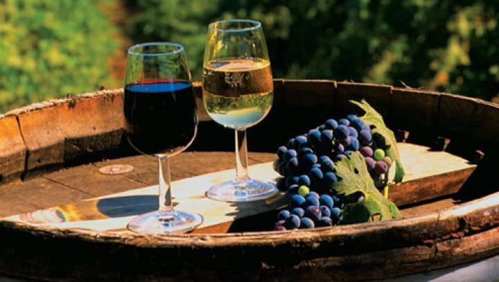 Germania dă o mână de ajutor ţării noastre. Vinurile moldoveneşti vor fi prezente la prestigioasa expoziţie din Düsseldorf