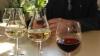 Ruşii vin în Moldova să inspecteze laboratoarele de certificare a vinurilor