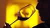 """""""Aveţi o ofertă atractivă, iar preţurile sunt imbatabile"""". Somelieri europeni, încântaţi de vinurile din Moldova (VIDEO)"""