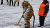 În Ucraina a nins în mijocul toamnei. Prima zăpadă a căzut şi la Kiev (VIDEO)