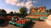 Minunăţii din dovleci. Un fermier britanic a creat opere de artă pe acoperişul casei sale VIDEO