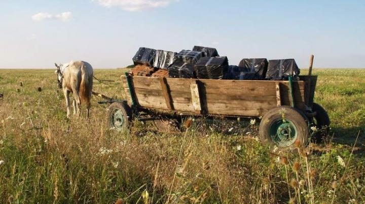 O căruţă bucşită cu ţigări de contrabandă, oprită la frontiera moldo-română cu focuri de armă