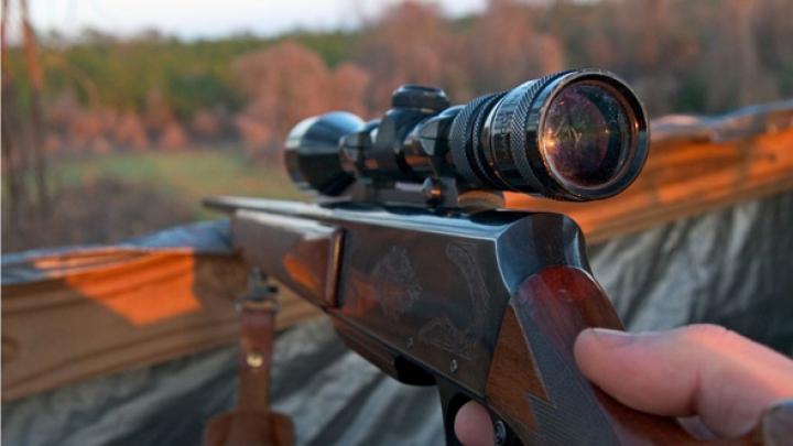 START sezonului de vânătoare la gâşte migratoare şi fazani. Ce trebuie să ştii dacă îţi place să vânezi