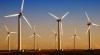O compania eoliană din SUA a fost amendată cu un milion de dolari pentru moartea unor păsări