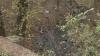 O femeie de 30 de ani, găsită moartă într-un canal din sectorul Râşcani al capitalei (VIDEO)