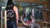 Ţintuită în scaunul cu rotile, o tânără din Moldova a câştigat mai multe concursuri într-un sport destinat exclusiv bărbaţilor