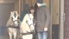 Surpriză de sărbători! Grădina zoologică din Bardar a cumpărat doi ponei albi, care vor plimba copiii în PMAN