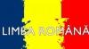 Curtea Constituţională a decis: Limba de stat a Moldovei este cea indicată în Declaraţia de Independenţă - româna