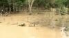 Potop în America Latină. Circa zece oameni au murit din cauza ploilor torenţiale