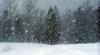 Meteorologii emit Cod Galben de avertizare pentru condiţii de vreme zbuciumată în următoarele zile