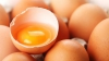 Experiment inedit: Ce se întâmplă când spargi un ou într-un lichid cu o temperatură de -73 de grade