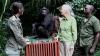 VIDEO EMOŢIONANT! Momentul în care un cimpanzeu îşi ia adio de la femeia care l-a salvat de la moarte