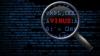 """Virusul cibernetic """"The Mask"""" a făcut victime în 31 de ţări ale lumii"""