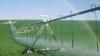 Programul Compact simplifică procedurile de acordare a creditelor pentru fermieri