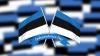Estonia celebrează 96 de ani de la prima proclamare a independenţei sale