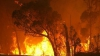 Sud-Estul Australiei este pârjolit de cele mai grave incendii din ultimii cinci ani (VIDEO)