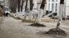 Autorităţile municipale PROMIT că până pe 1 mai, Chişinăul va avea stradă pietonală