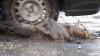 """""""Chisinau, the road to Europe"""". Un filmuleţ despre gropile din asfalt, murdăria şi nepăsarea din capitală (VIDEO)"""
