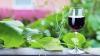 Expovin Moldova 2014 şi-a deschis porţile pentru vinificatorii din ţară