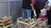 Ciupercile şi ardeii sunt cele mai scumpe produse de post la Piaţa Centrală. VEZI care sunt preţurile la alte alimente pentru asceţi