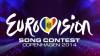 EUROVISION 2014: Diseară vom decide cine din interpreţi va reprezenta ţara noastră la Copenhaga