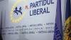 Liberalii cer Curţii Constituţionale excluderea lui Formuzal din Guvern
